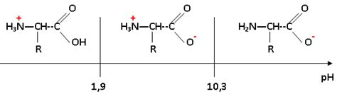 tracer un diagramme de prédominance acide amin la cystine appareils uv et produits