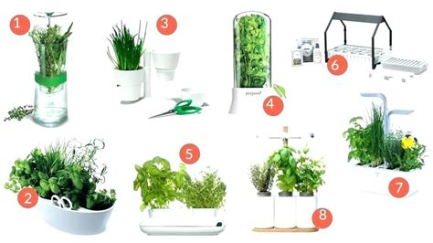 Herbes Aromatiques Cuisine Liste by Herbes Aromatiques Cuisine Cuisine 1 Plante Aromatique