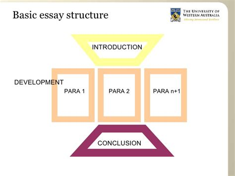 Essay Structure by Essay Structure For Arts Students