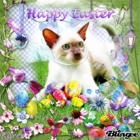 cat easter wallpaper happy easter siamese cat picture 128673805 blingee com