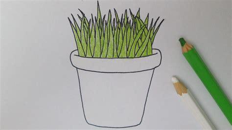 c 243 mo dibujar una planta en maceta