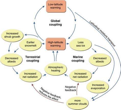 feedback loop diagram the world s catalog of ideas