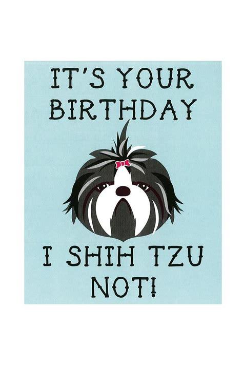 Birthday Card Meme - best 25 birthday meme dog ideas on pinterest happy