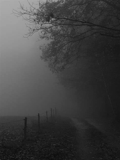 imagenes de paisajes sad niebla oscura niebla pinterest niebla oscuro y