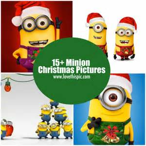 15 minion christmas pictures