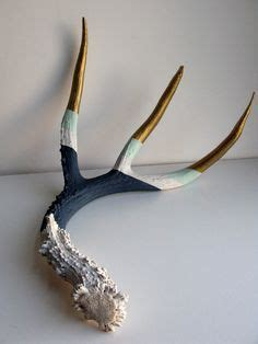 hi sugarplum pinterest challenge day diy faux antlers 1000 images about antlers on pinterest painted antlers