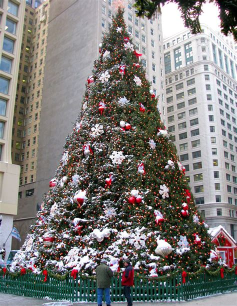 christmas christmas tree chicago festivethoughts