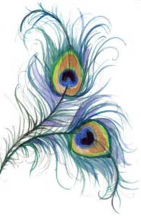 possible peacock feather tattoo would want a 3rd feather