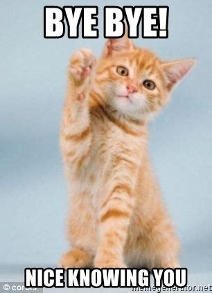 Goodbye Cat Meme - the gallery for gt goodbye cat meme
