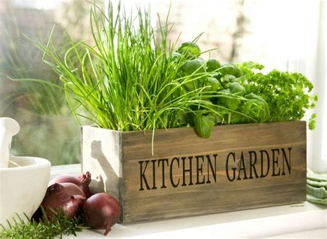 Garden Herb Planter by White Herb Garden Planter 2 Diy Projects