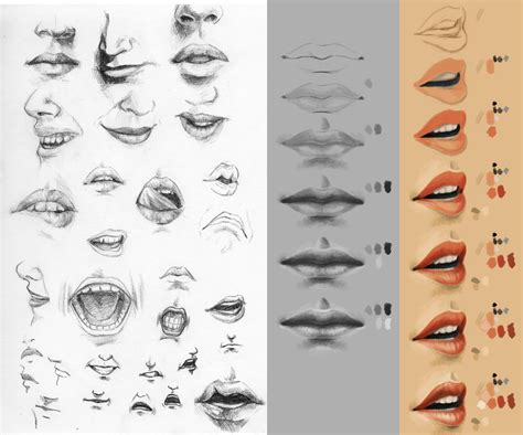 tutorial sketchbookx study sketch tutorial mouth by cthulhu great on