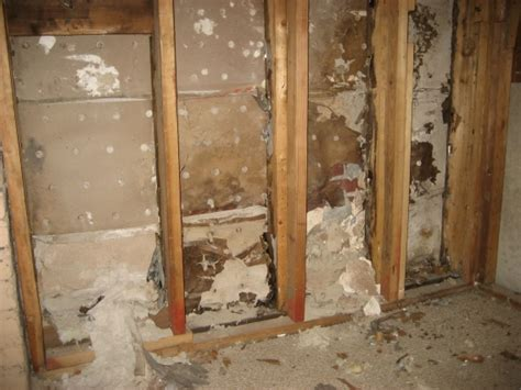 Asbestos On Walls - drywall identification asbestos drywall plaster