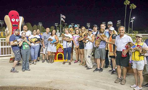 wiener nationals wienerschnitzel wiener nationals is on hunt for fastest dachshund in the west