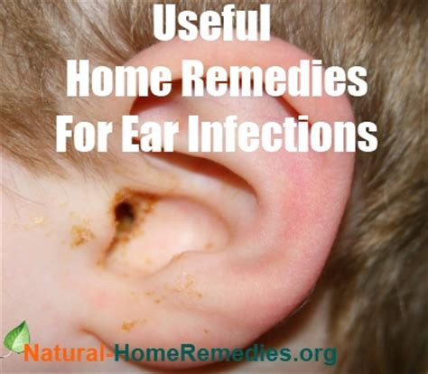 ear yeast infection home remedy ear infection causes and treatments home remedies for ear infections and earaches