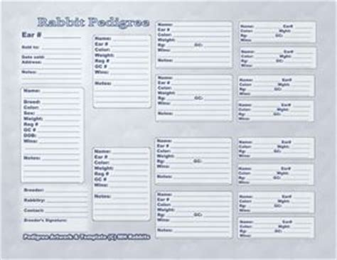 Free Printable And Downloadable Rabbit Pedigrees Rabbit Stuff Pinterest Rabbit Farm Free Rabbit Pedigree Template
