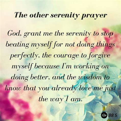 Serenity Prayer Meme - the other serenity prayer quotes cartoons memes