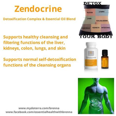 Essential Oils For Heavy Metal Detox by 31 Best Essential Zendocrine Blend Images On