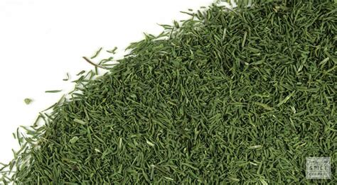 Bulk Store by Dried Dill Weed Buy Bulk Dried Dill Weed
