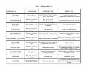 biology 1 2 sheet by eldiego650