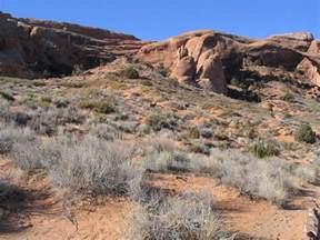 Landscape Arch Size File Landscape Arch Arches National Park Moab Utah