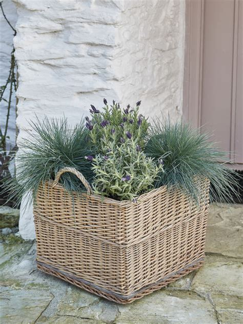 Willow Planters Uk by Square Willow Planter On Wheels