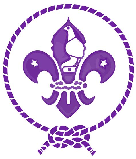 The Scout the scout association of
