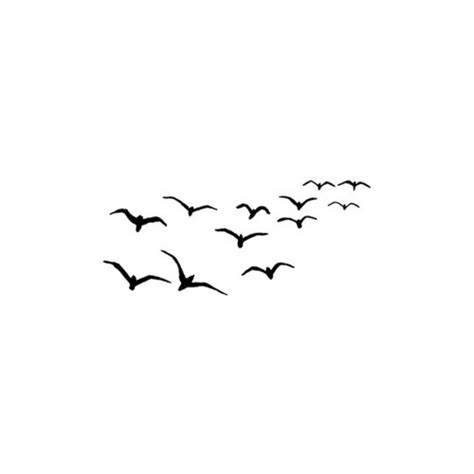 Disn Y Back black and white birds background bird litle pups