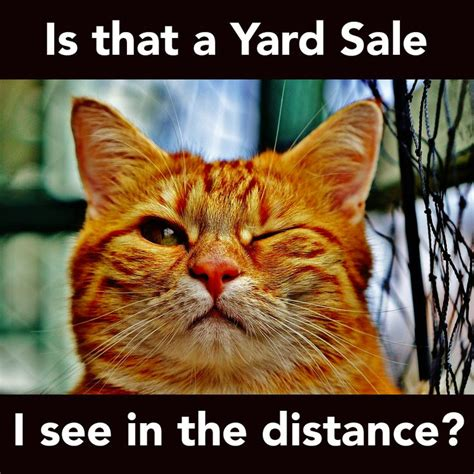 Yard Sale Meme - 17 best images about fundraising on pinterest adoption