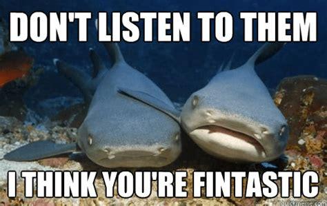 Funny Shark Meme - what can the funniest shark memes on the internetz teach