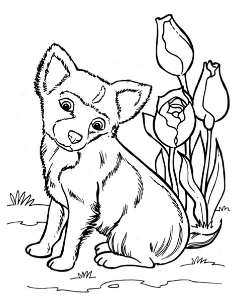 coloring pages of husky puppies husky puppy coloring pages az coloring pages