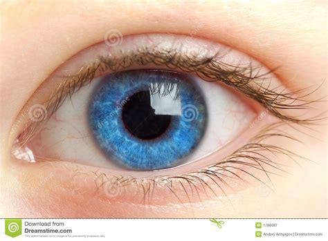imagenes de ojos zarcos ojo humano shooting macro fotograf 237 a de archivo libre