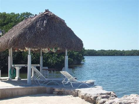 Tiki Hut Resorts Lagoon Picture Of Kon Tiki Resort Islamorada
