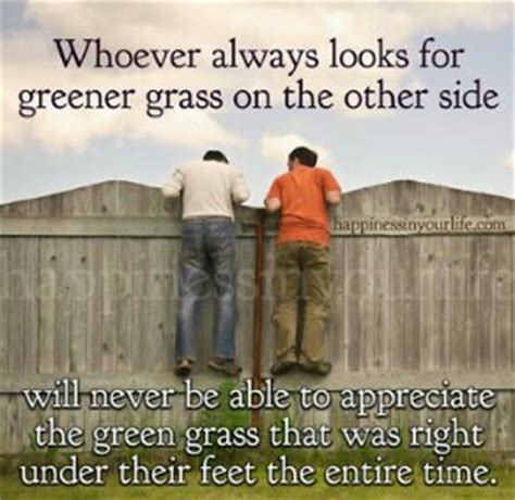 the grass is greener till you get to the other side books the grass on the other side will always seems greener