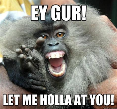 Meme Monkey - 47 very funny monkey memes images pictures gifs