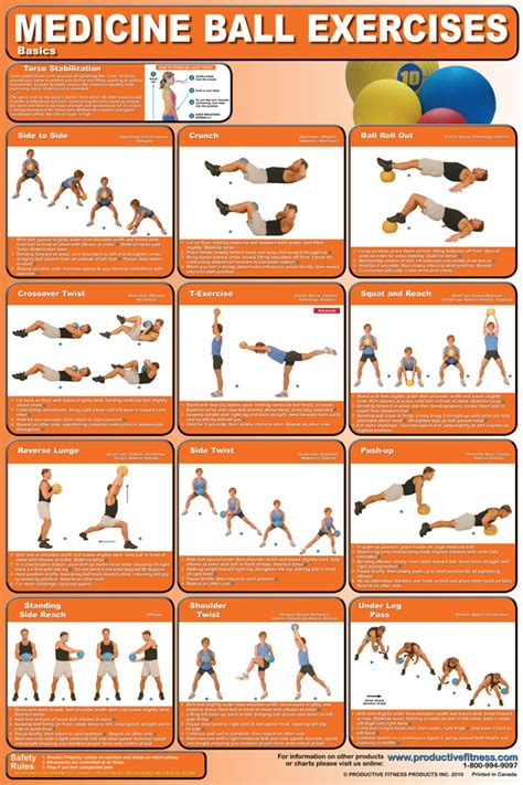 printable exercise ball workouts for beginners gym ball exercise chart pdf sport fatare