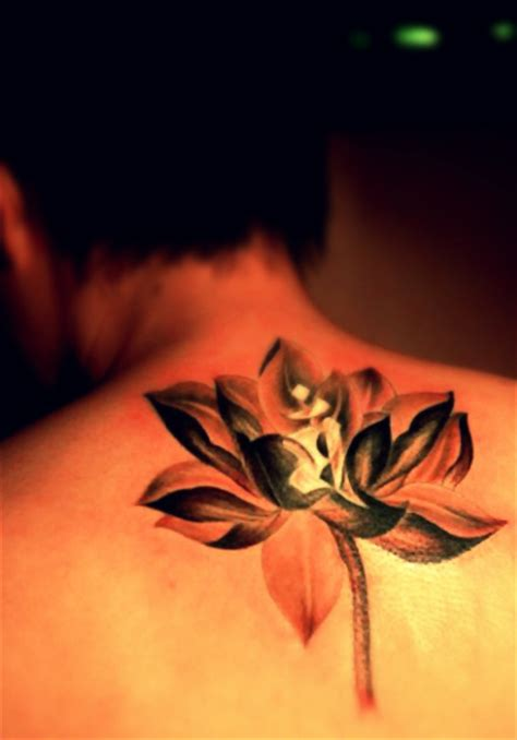 lotus tattoo designs free 1000 images about tattoo inspiration on pinterest lotus