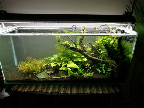 aquascape tank for sale for sale 3 foot aquascape tank and cabinet with many