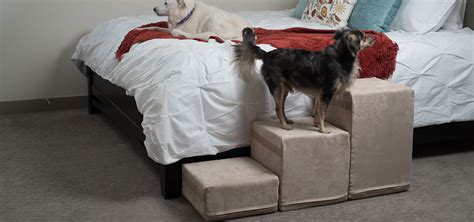 pet steps for tall beds tall dog stairs for bed pet gear easy step iv step dog