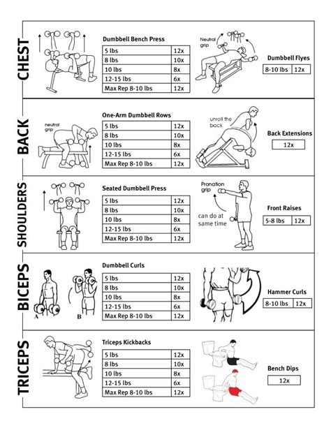 bench routine for strength bench press workout plans 28 images bench press