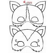 Mască Pisicuță  Educatie In Mures