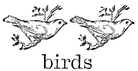 early bird coloring page pin easy birds coloring pages on pinterest 91 early bird