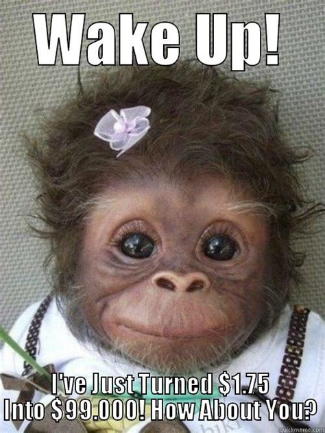 Wake Up Meme - wake up monkey quickmeme