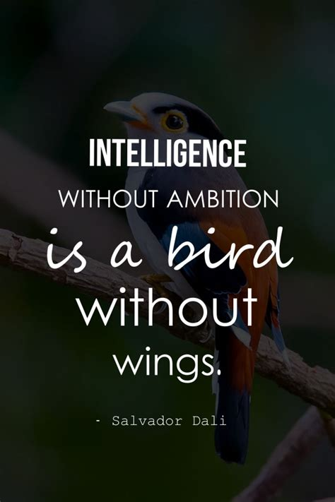 quotes about ambition 28 best collection of ambition quotes and ambition sayings