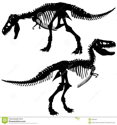 Small Business Floor Plans T Rex Skeleton Stock Image Image 30230941