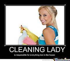 Brisbane Upholstery Cleaning Memes Funny House Cleaning Memes