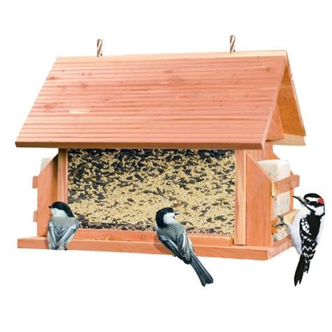 Glodok Lb By A D Bird the lodge cedar bird feeder 8 lbs bird supplies