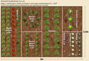 Ideal Vegetable Garden Layout How To Grow Your Own Food For Increased Security Health Financial And Happiness Benefits
