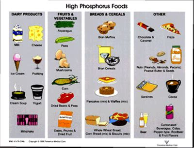 low phosphorus food your kidneys