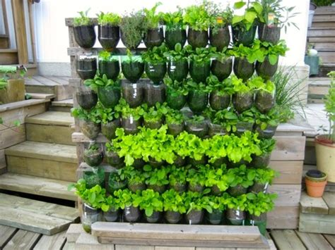 researching diy vertical garden ideas that actually look good milkwood permaculture courses