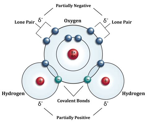 covalent bond diagram structure of water essence of water